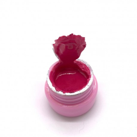 Gel Paint - 67 FUCSIA