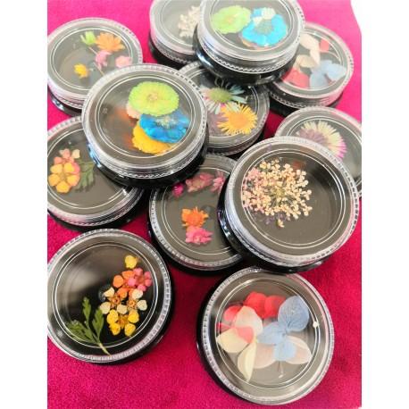 Flores secas para decoración de uñas