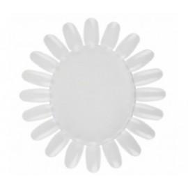 Paleta circular para muestra blanca
